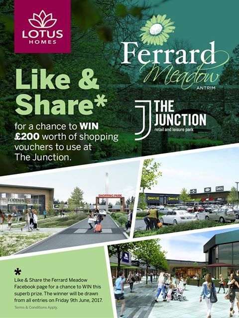 FERRARD MEADOWS | ANTRIM | COMPETITION